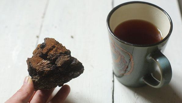 лечение чаем из гриба чаги