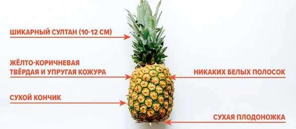 Можно ли ананас при панкреатите хроническом thumbnail