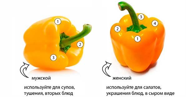 как выбрать перец