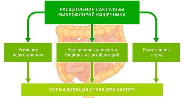 механизм действия Дюфалака