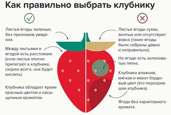 как правильно выбрать клубнику
