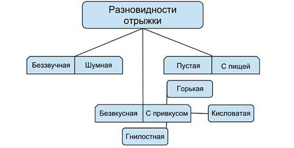 Классификация отрыжки