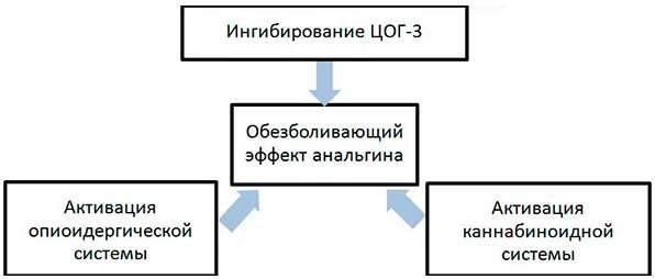 Механизм действия Анальгина