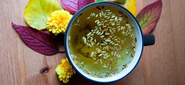 Лечебный чай из плодов фенхеля