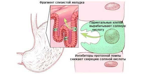 Н2-гистаминоблокаторы